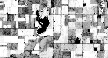 Sample NDWI image