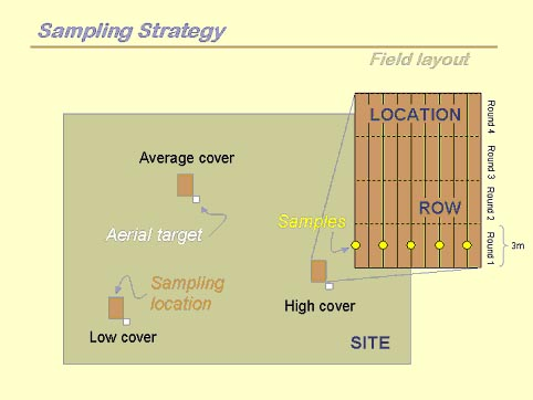 Schematic of vegetation sampling strategy