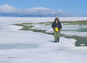 Photograph of scientists conducting fieldwork on St. Patrick Bay ice cap
