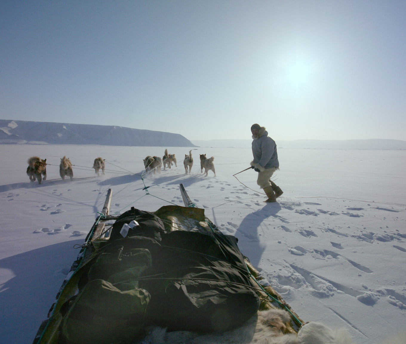 A seal hunter prepares to jump back on his the sled in Qanaaq, Greenland. ADACIS data includes local traditional knowledge shared by Arctic residents and indigenous people. Cedit: Andy Mahoney, NSIDC