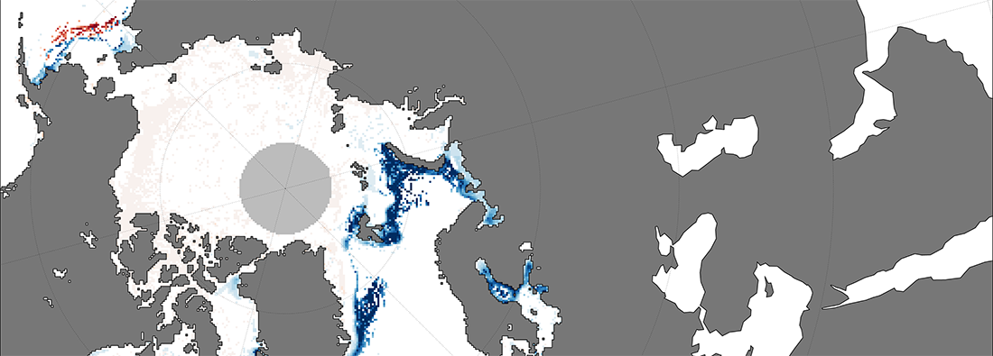 Sample image from sea ice analysis tool