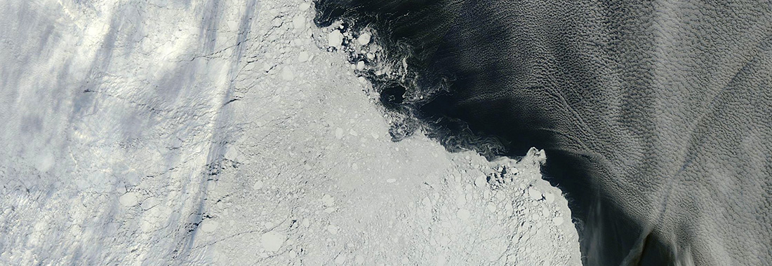 Latest on sea ice