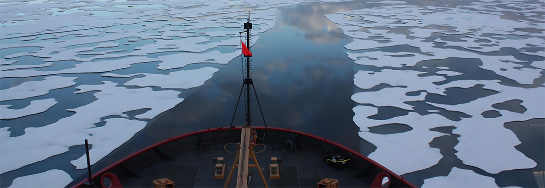 NASA photo of sea ice from ship