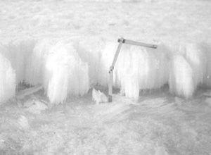 "A ruler measures the ice freeboard, or the height of the ice above the water. Ice draft, on the other hand, is the depth of the ice below the surface of the water. Notice the elongated crystals. Image credit: EWG. (<a href=""/cryosphere/gallery/photo/34095"">View photo detail.</a>) <br>"