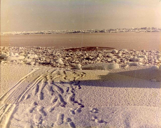 "AIDJEX 1972 pilot study: snowmobile tracks lead to a hole in the ice. Image Credit:  NSIDC courtesy Tom Marlar/CRREL <a href=""http://nsidc.org/data/aidjex/"">AIDJEX Web site</a> (<a href=""/cryosphere/gallery/photo/33433"">View photo detail.</a>) <br>"
