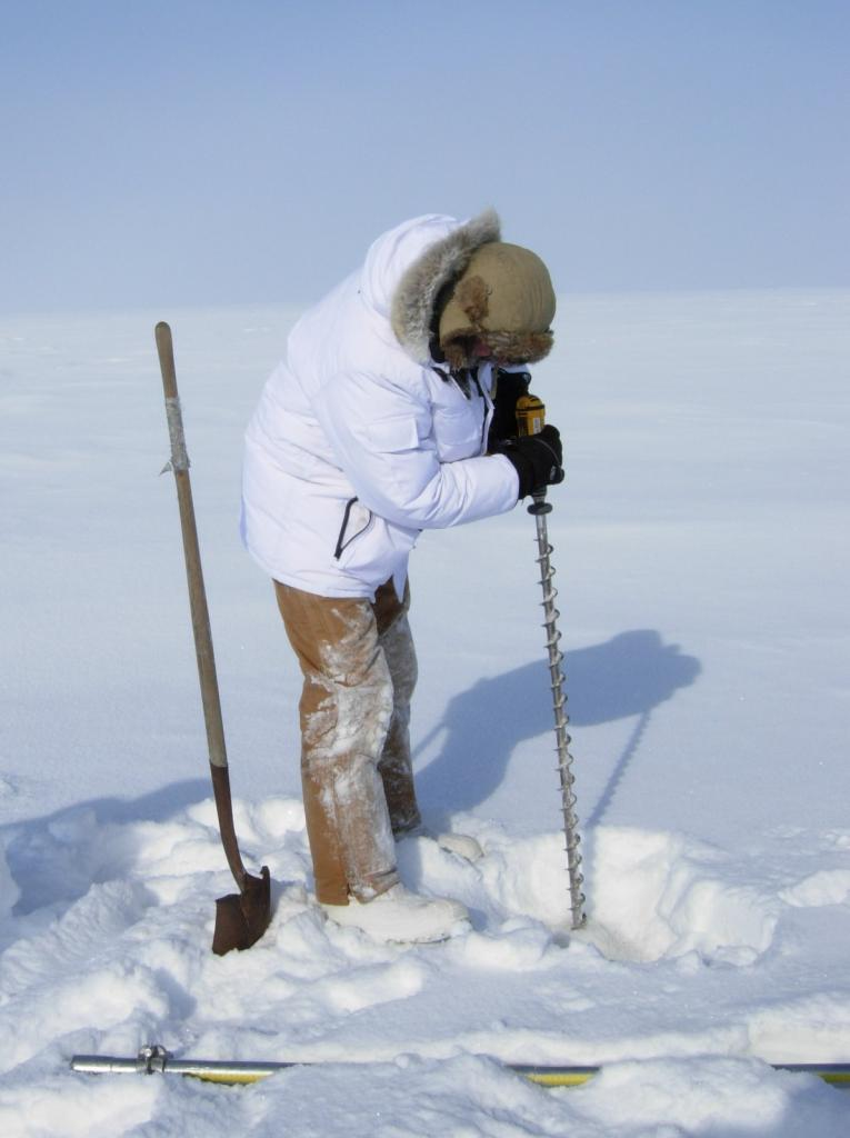 "Mark Serreze drills holes in the ice. Image courtesy Mark Serreze, NSIDC. (<a href=""/cryosphere/gallery/photo/33636"">View photo detail.</a>) <br>"