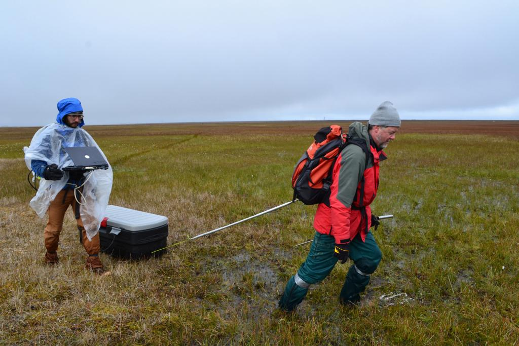 "Kevin Schaefer pulls a ground penetrating radar unit through the tundra near Barrow, Alaska on August 14, 2013 to measure the active layer depth. The radar unit (in the box) emits a pulse which reflects off the permafrost to measure the active layer depth, which is recorded in the computer held by Andy Parsekian (Credit: Elchin Jafarov, NSIDC). (<a href=""/cryosphere/gallery/photo/34151"">View photo detail.</a>) <br>"