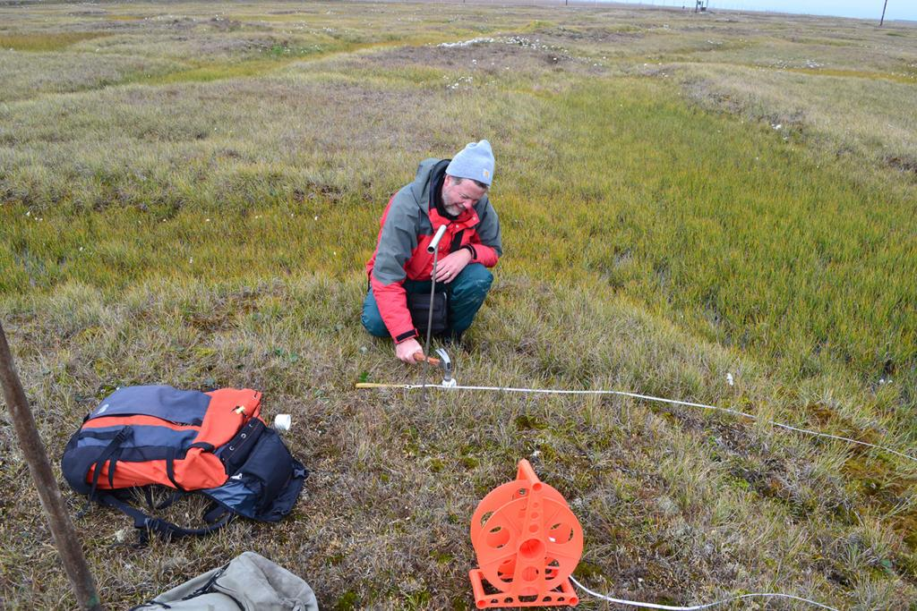 "Kevin Schaefer uses a hammer to pound a soil sample tube into the ground near Barrow, Alaska on August 13, 2013. (Credit: Elchin Jafarov, NSIDC). (<a href=""/cryosphere/gallery/photo/34150"">View photo detail.</a>) <br>"