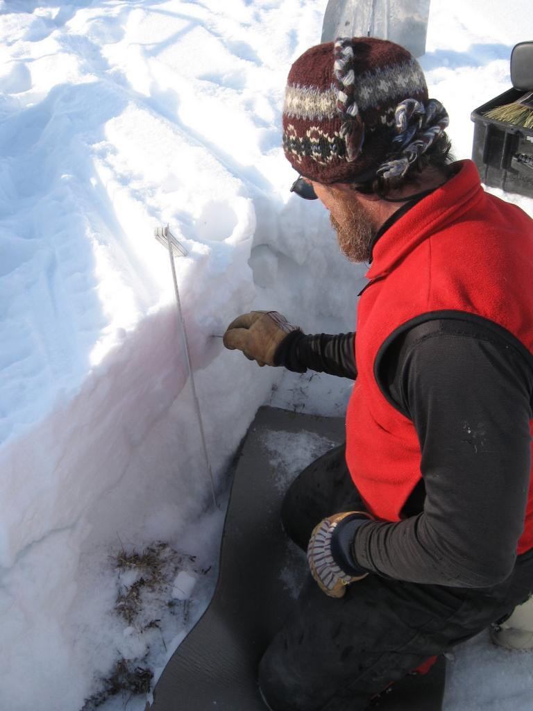 "Matthew Sturm scrapes to get a sample. Image courtesy  Andrew Slater, NSIDC. (<a href=""/cryosphere/gallery/photo/33677"">View photo detail.</a>) <br>"