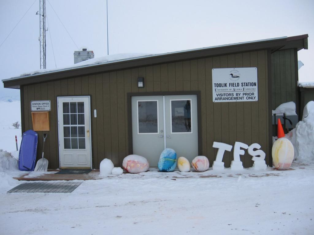 "Toolik Field Station. Image courtesy  Andrew Slater, NSIDC. (<a href=""/cryosphere/gallery/photo/33687"">View photo detail.</a>) <br>"