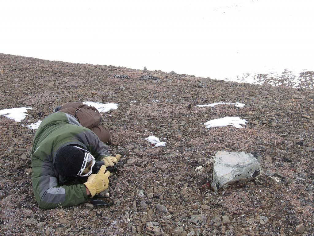 "Christopher Hiemstra photographs some data. Image courtesy  Andrew Slater, NSIDC. (<a href=""/cryosphere/gallery/photo/33694"">View photo detail.</a>) <br>"