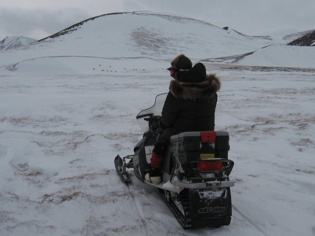 "Matthew Sturm rides off on a snowmobile. Image courtesy Andrew Slater, NSIDC. (<a href=""/cryosphere/gallery/photo/33701"">View photo detail.</a>) <br>"