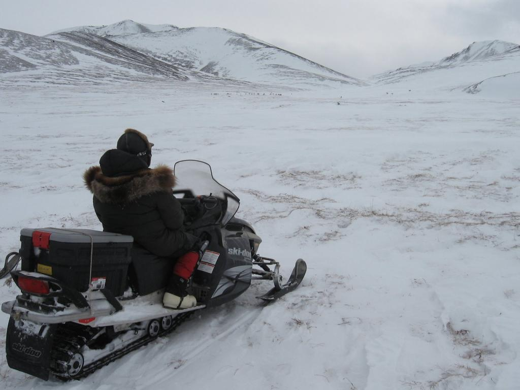 "Matthew Sturm rides a snowmobile. Image courtesy Andrew Slater, NSIDC. (<a href=""/cryosphere/gallery/photo/33699"">View photo detail.</a>) <br>"