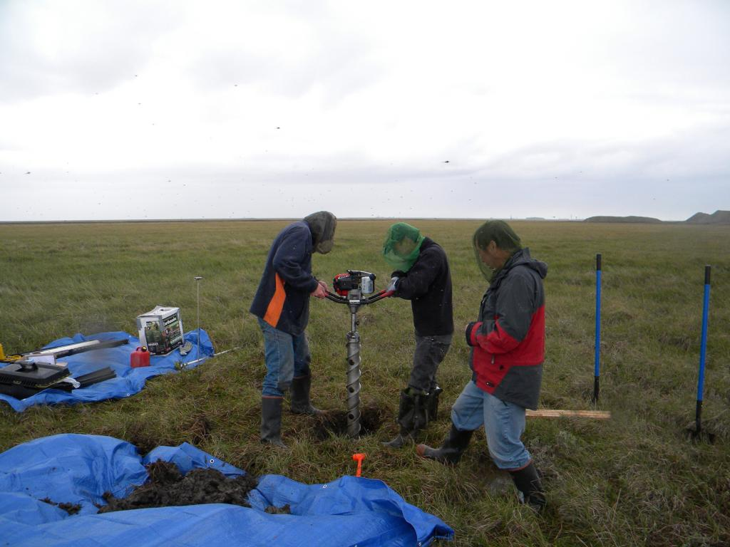 "Research volunteer Tim Schaefer, Standford University scientist Lin Liu, and NSIDC senior research scientist Tingjun Zhang drill a permafrost sample south of Deadhorse, Alaska on July 10, 2009. The head nets protect the researchers from the clouds of mosquitoes that continually swarmed around them. (Credit: Kevin Schaefer, NSIDC) (<a href=""/cryosphere/gallery/photo/34181"">View photo detail.</a>) <br>"