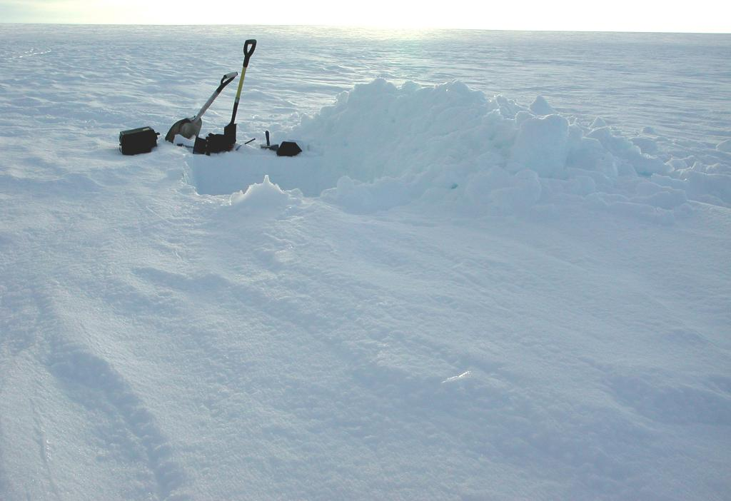 "A snow pit that I dug and analyzed at Swiss Camp. It was one of my primary duties to dig and analyze snow pits at the various sites we visited. Photo by John Maurer, CIRES/NSIDC, University of Colorado. (<a href=""/cryosphere/gallery/photo/33163"">View photo detail.</a>) <br>"