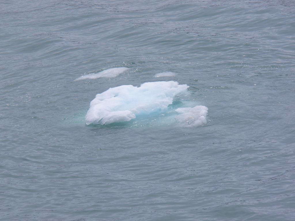 "Ice floating in Glacier Bay. Glacier Bay National Park, AK. From ship. Image Credit:  Courtesy Lynn French, NSIDC (<a href=""/cryosphere/gallery/photo/33403"">View photo detail.</a>) <br>"