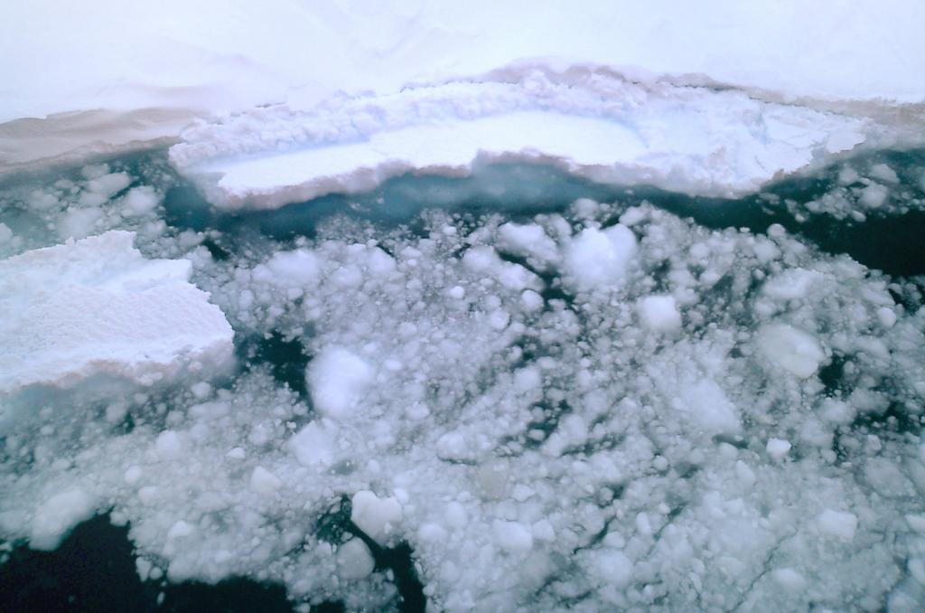 "An above view of the edge of the smooth snow-covered sea ice, which broken pieces floating off. Photo Credit: NSIDC Courtesy Anthony Petty (<a href=""/cryosphere/gallery/photo/33209"">View photo detail.</a>) <br>"