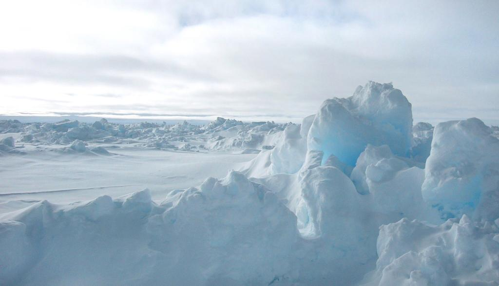 "One of the ice floes encountered along the ARISE Cruise. Photo Credit: Courtesy Ted Scambos, NSIDC (<a href=""/cryosphere/gallery/photo/33224"">View photo detail.</a>) <br>"