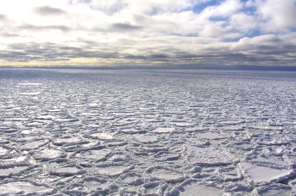 "One of several visual examples of pancake ice, otherwise known as cake ice. Photo Credit: Courtesy Ted Scambos, NSIDC (<a href=""/cryosphere/gallery/photo/33240"">View photo detail.</a>) <br>"
