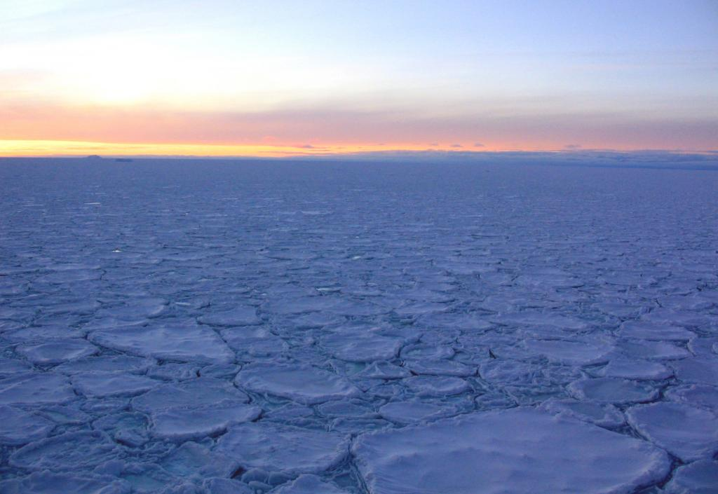"One of several visual examples of pancake ice, otherwise known as cake ice. Photo Credit: Courtesy Ted Scambos, NSIDC (<a href=""/cryosphere/gallery/photo/33241"">View photo detail.</a>) <br>"