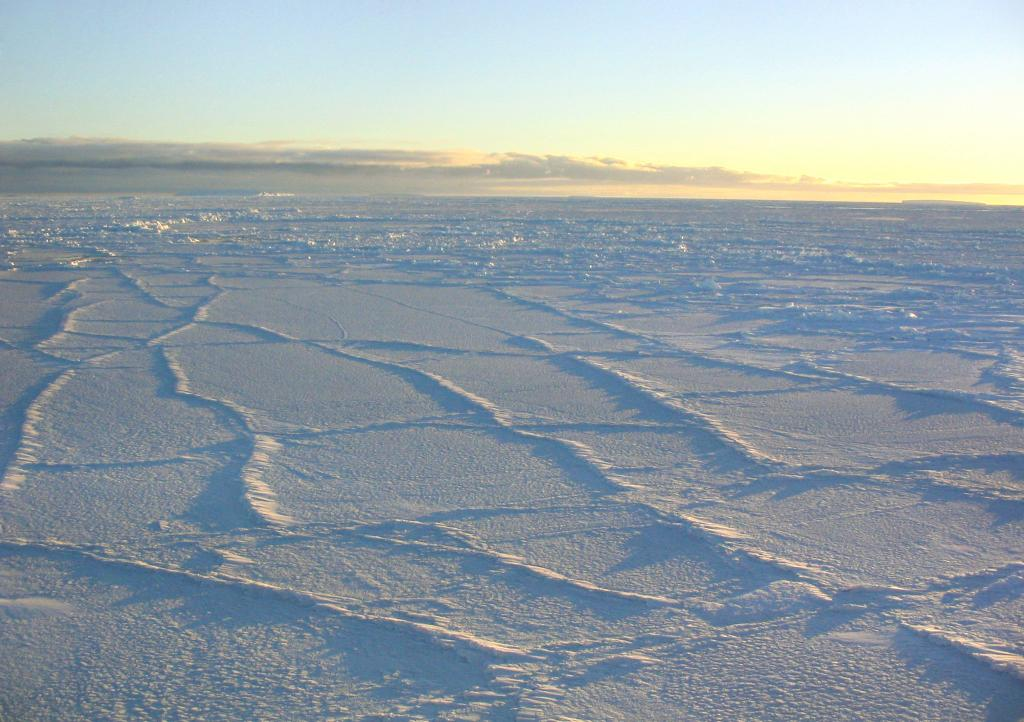 "The Antarctic sunlight illuminating the surface of the sea ice, intensifying the effect of the fracture lines. Photo Credit: NSIDC Courtesy Scott Stark (<a href=""/cryosphere/gallery/photo/33255"">View photo detail.</a>) <br>"