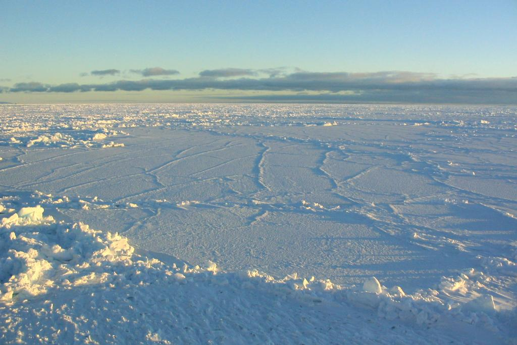 "The Antarctic sunlight illuminating the surface of the sea ice, embossing the fracture lines. Photo Credit: NSIDC Courtesy Scott Stark (<a href=""/cryosphere/gallery/photo/33252"">View photo detail.</a>) <br>"