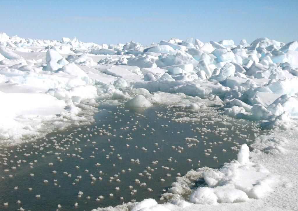 "A pond formed amidst the surface of the sea ice. Photo Credit: Courtesy Ted Scambos, NSIDC (<a href=""/cryosphere/gallery/photo/33259"">View photo detail.</a>) <br>"