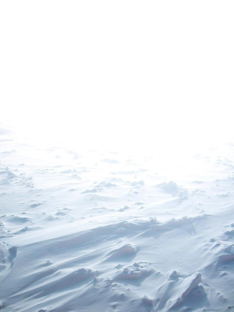 "An artistic shot taken of the surface of smooth-covered sea ice disappearing into the Antarctic light. Photo Credit: NSIDC Courtesy Alice O'Connor (<a href=""/cryosphere/gallery/photo/33212"">View photo detail.</a>) <br>"