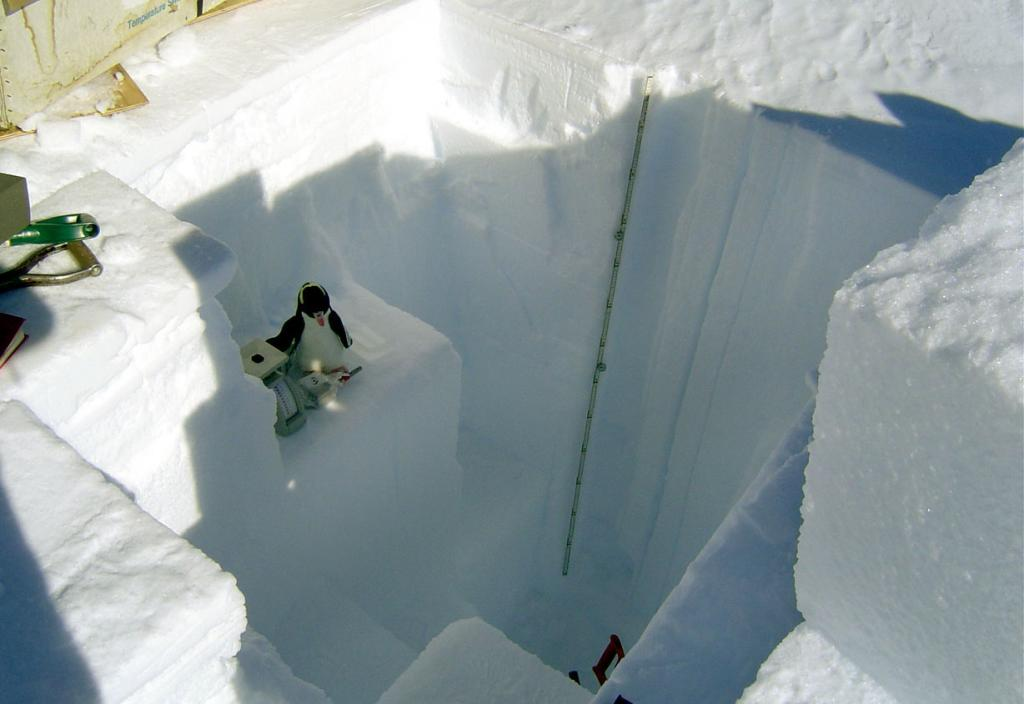 "This is one in a series of photos of Pengy the stuffed penguin.This photo is of Pengy in one of the snow pits. Image Credit:  NSIDC courtesy Ted Scambos and Rob Bauer. (<a href=""/cryosphere/gallery/photo/33084"">View photo detail.</a>) <br>"