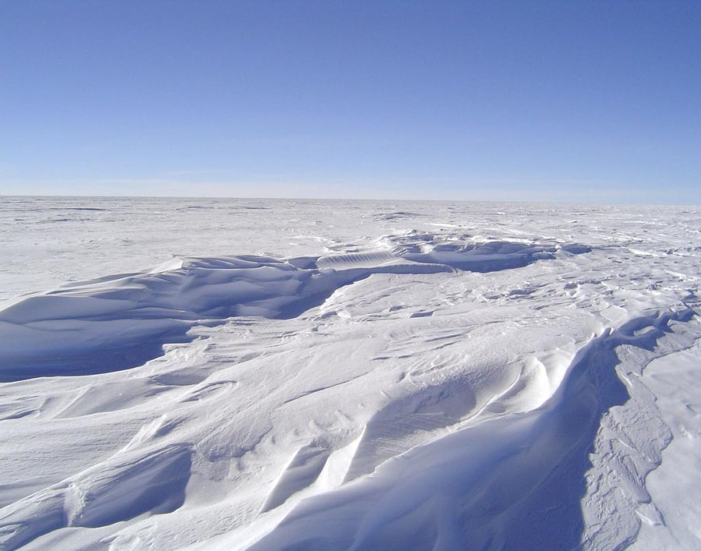 "This is one in a series of photos of sastrugi formed on the dunes. Image Credit:  NSIDC courtesy Ted Scambos and Rob Bauer. (<a href=""/cryosphere/gallery/photo/33094"">View photo detail.</a>) <br>"