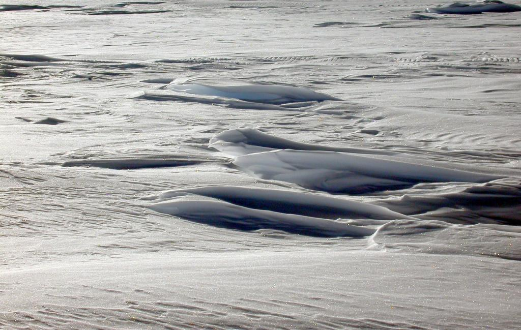 "This is one in a series of photos of sastrugi formed on the dunes. Image Credit:  NSIDC courtesy Ted Scambos and Rob Bauer. (<a href=""/cryosphere/gallery/photo/33101"">View photo detail.</a>) <br>"
