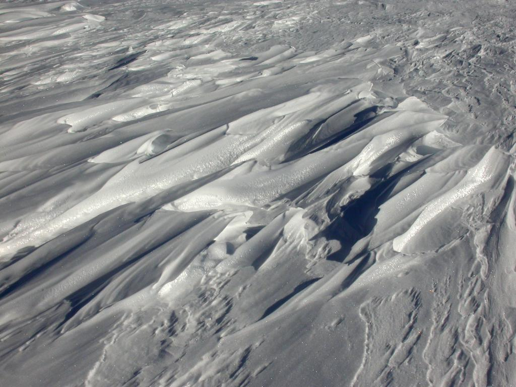 "This is one in a series of photos of sastrugi formed on the dunes. Image Credit:  NSIDC courtesy Ted Scambos and Rob Bauer. (<a href=""/cryosphere/gallery/photo/33104"">View photo detail.</a>) <br>"