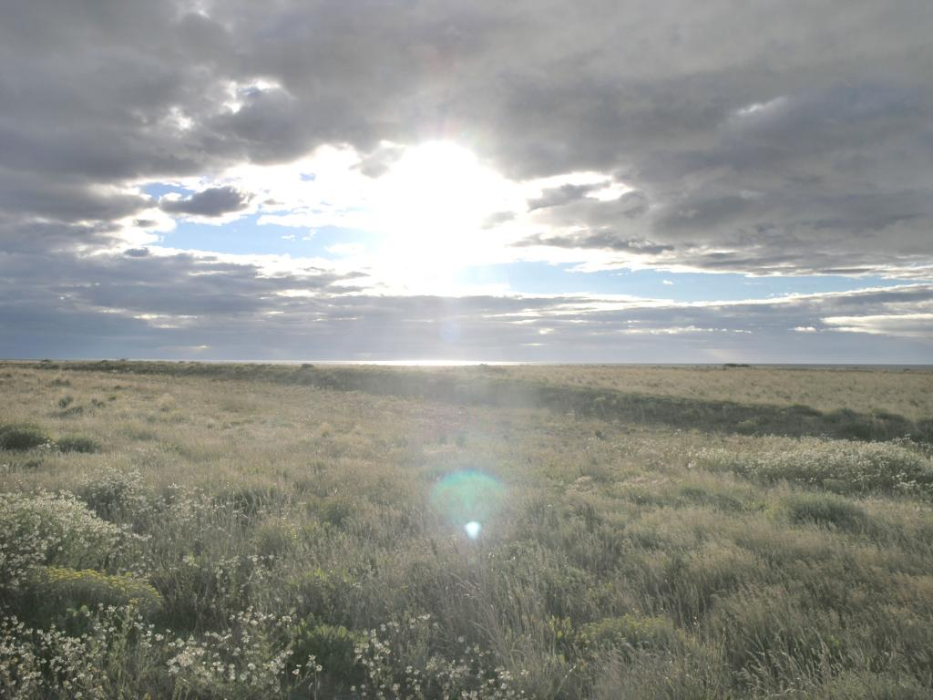 "Along the trip between Puenta Arenas and Rio Gallegos, the sun rises over the roadside. Photo Credit: Courtesy Ted Scambos and Rob Bauer, NSIDC  <a href=""http://nsidc.org/icetrek"">IceTrek Web site</a> (<a href=""/cryosphere/gallery/photo/33388"">View photo detail.</a>) <br>"