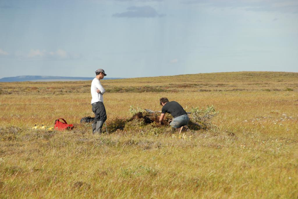"Lin Liu and Alessio Gusmeroli dig into a small pingo south of Deadhorse, Alaska on August 17, 2012. (Credit: Tingjun Zhang, NSIDC) (<a href=""/cryosphere/gallery/photo/34179"">View photo detail.</a>) <br>"