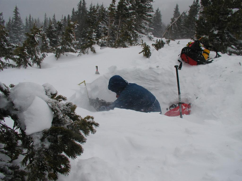 "A scientist takes snow pit measurements during the 2002 Cold Land Processes Field Experiment (CLPX). 22 February, 2002. <a href=""http://nsidc.org/data/clpx/"">CLPX Web site</a> (<a href=""/cryosphere/gallery/photo/33595"">View photo detail.</a>) <br>"