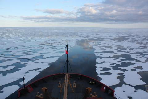 Photo of sea ice from a ship.