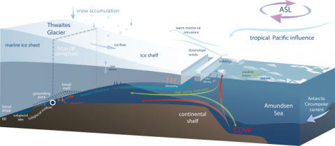 """Warm"" water, a few degrees above freezing, flows up from well below the surface of the ocean onto the continental shelf. It then flows along the bottom of the shelf until it reaches the point where the ice sheet begins to float, called the 'grounding line'. The water melts and thins the ice, causing it to retreat and flow faster."