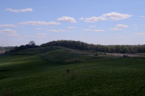 Photograph of Smith Drumlin Prairie, Wisconsin