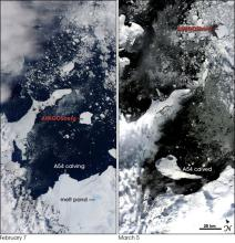Satellite image of a large iceberg calving off the Larsen Ice Shelf in Antarctica