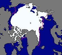 Sea ice polar projection