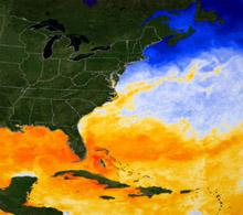 Gulf of Mexico SST