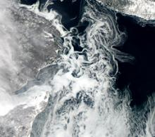 MODIS Aqua image from February 11, 2013 that shows sea ice forming in the Gulf of St. Lawrence, Canada