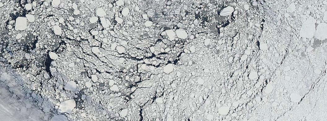 Arctic sea ice pack north of Alaska