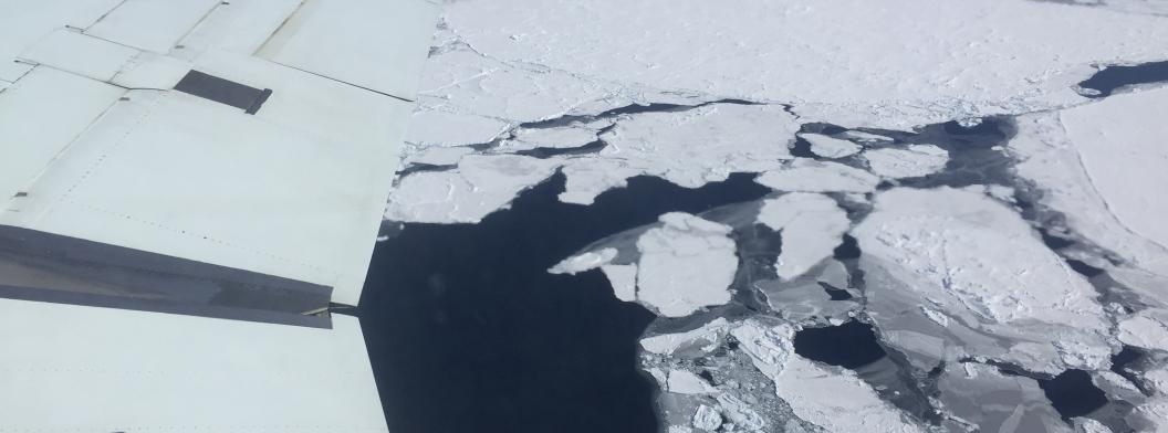 Broken ice floes in the Weddell Sea
