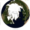 Globe with sea ice