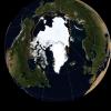 Arctic sea ice concentration